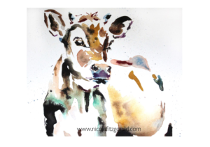 Jersey Cow, watercolour and ink