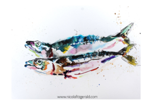 Mackerel, watercolour and ink