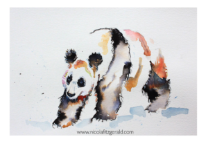 Panda Bear, watercolour and ink