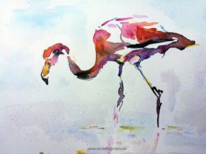 Flamingo Solo, watercolour and ink